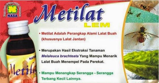 metilat brosur