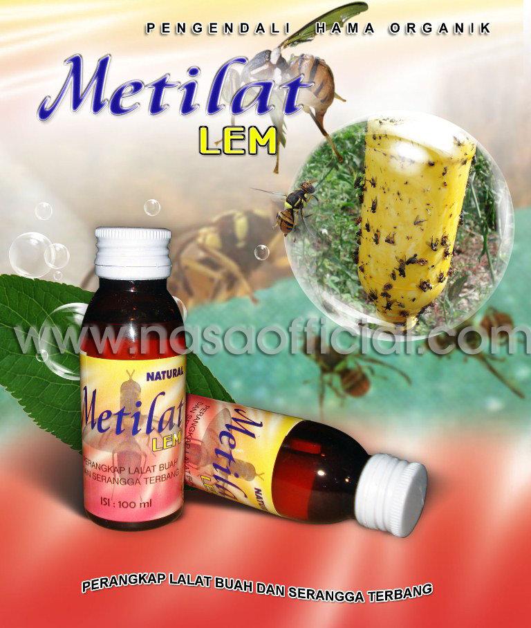 metilat_lem
